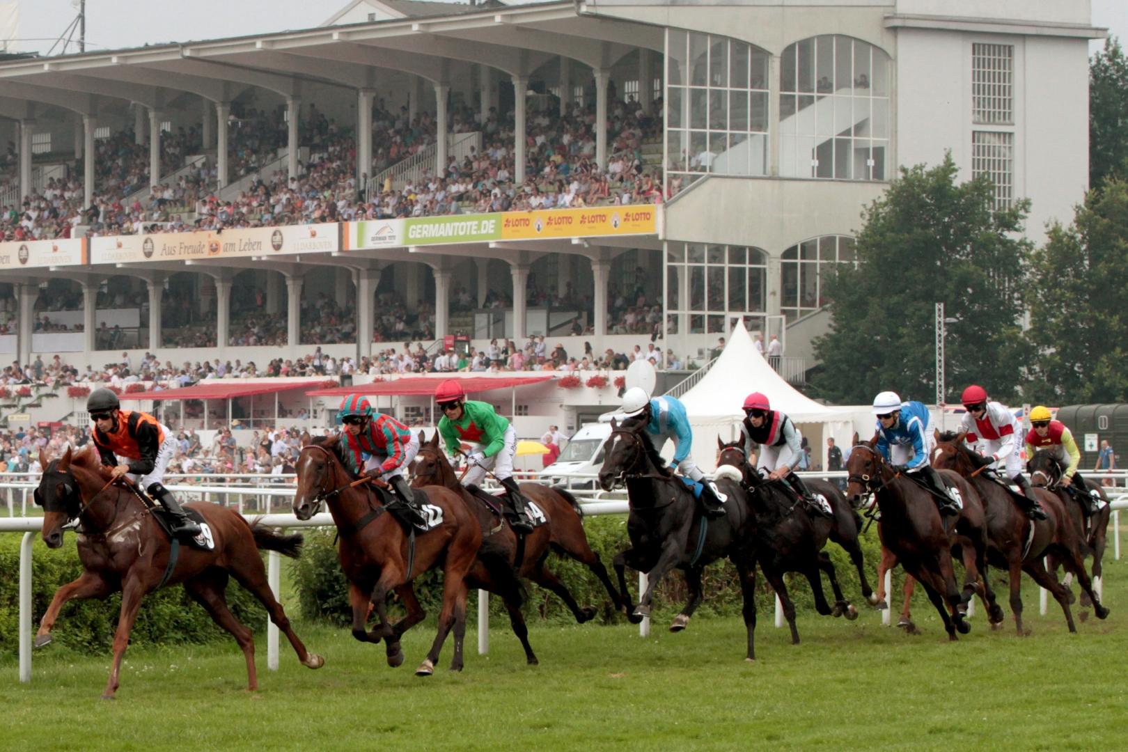 Derby Hamburg Horn